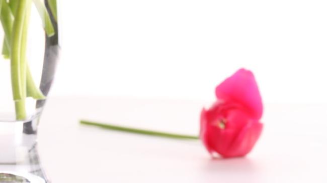 fleur fanée